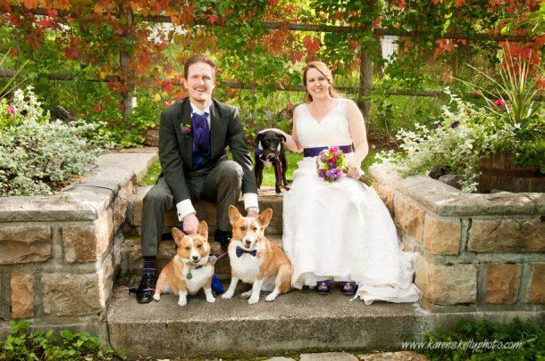 durango wedding photographer, durango co photographer, photographer durango co, durango pet photographer
