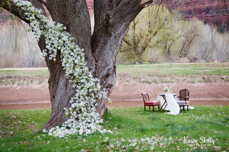 Wedding ceremony site, durango co photographers, durango photography, photographers in durango co
